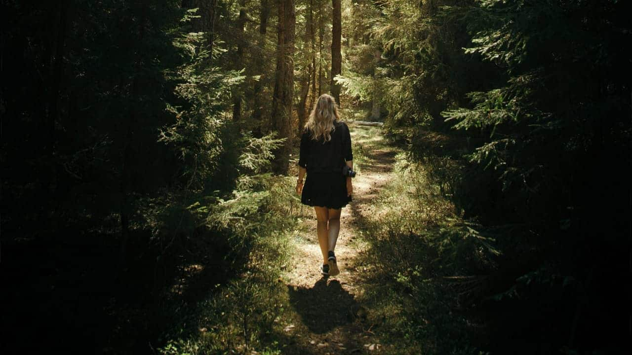 Happiness hack - Go for forest walk