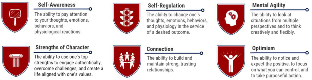 competencies of resilience