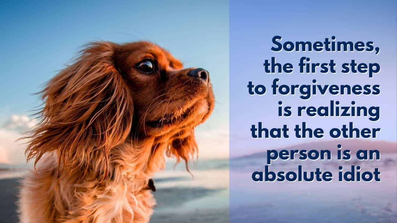 forgiveness is realizing other person is an idiot