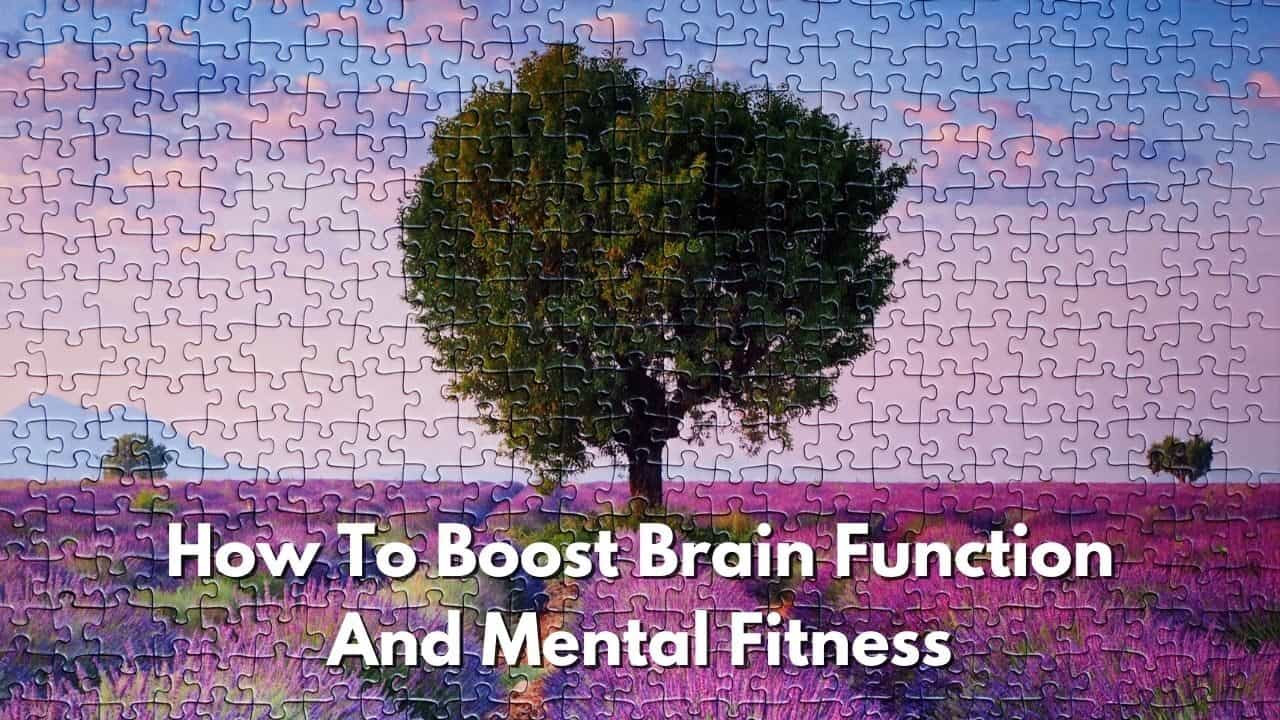 How To Improve Brain Function And Mental Fitness
